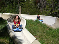 The Alpine Slide is an exhilarating ride down a 2,400 foot track